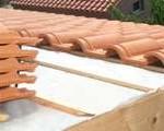 roof 295x120